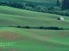 Домик среди поля